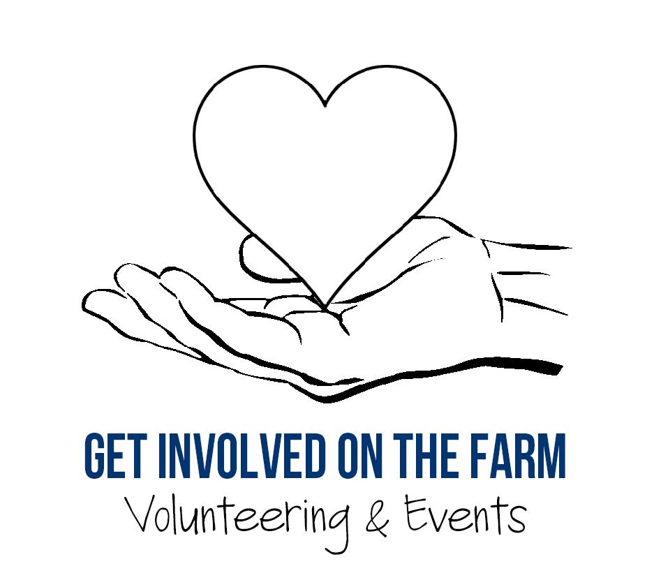 VolunteeringLink